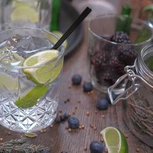 GIN AND NIBBLES - £30